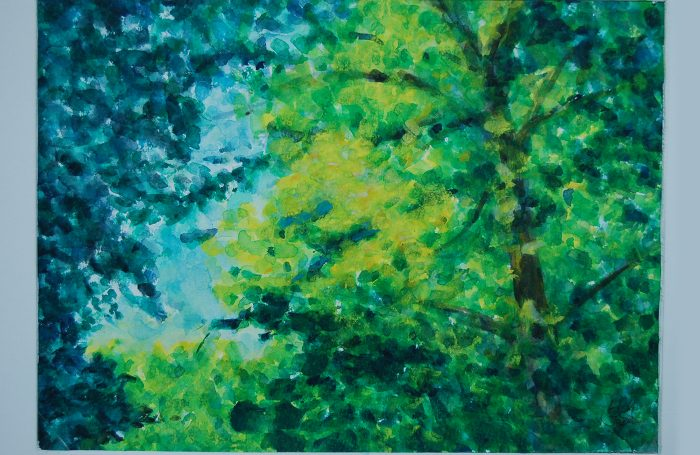 """006-01  Trees 962  11""""x7 3/4"""" watercolor $500"""