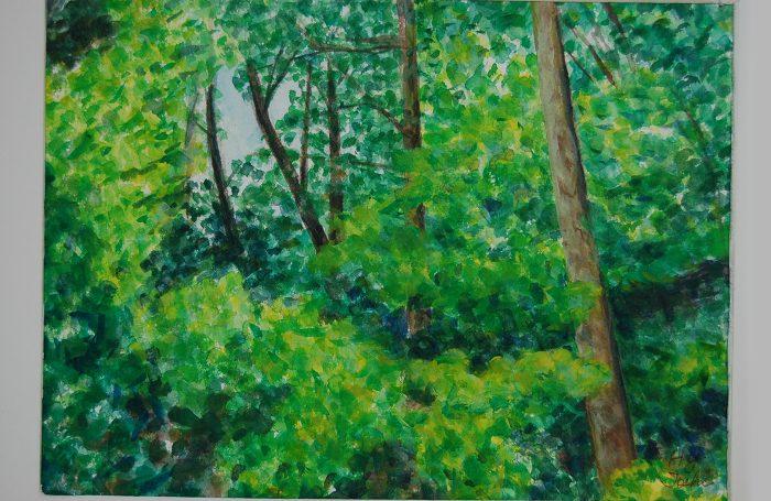"006-03  Tree 923  11""x7 3/4"" watercolor $500"